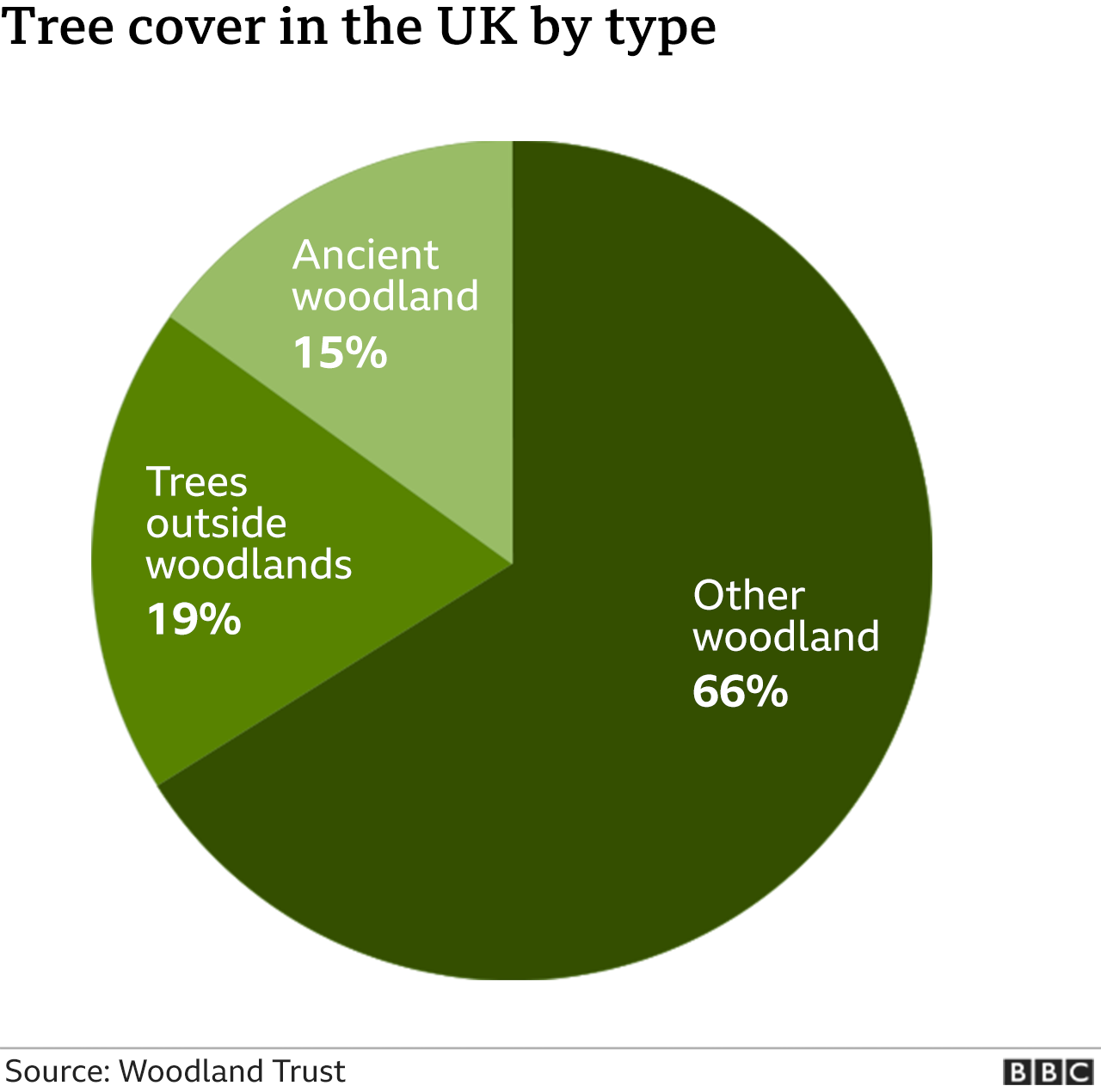 Chart showing tree cover in the usk by type: ancient woodland 15%; trees outside woodlands 19%; other woodland 66%.