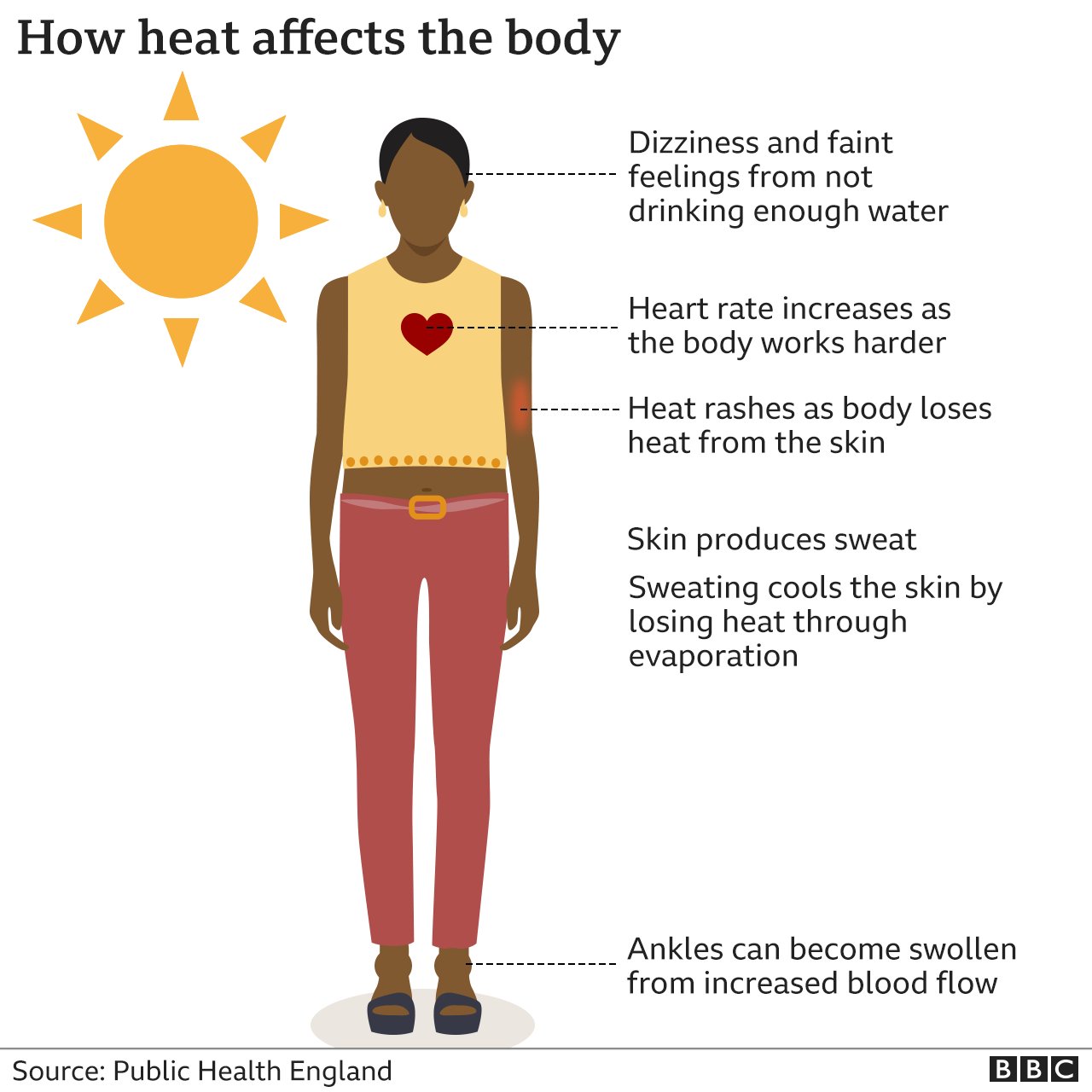 Heatwaves: What do they do to the body and who is at risk? thumbnail