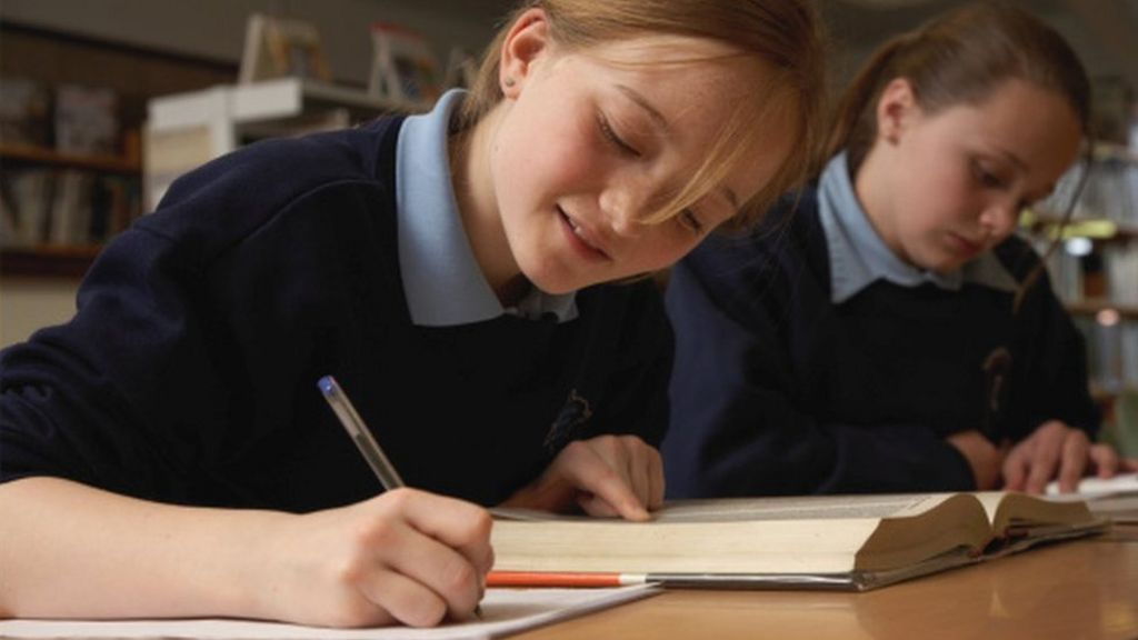 the advantages of mixed sex schools as an education system The debate about the relative merits and disadvantages of single-sex and co-educational schooling, like the debate about single-sex classes in mixed schools, is long running and shows no sign of abating.