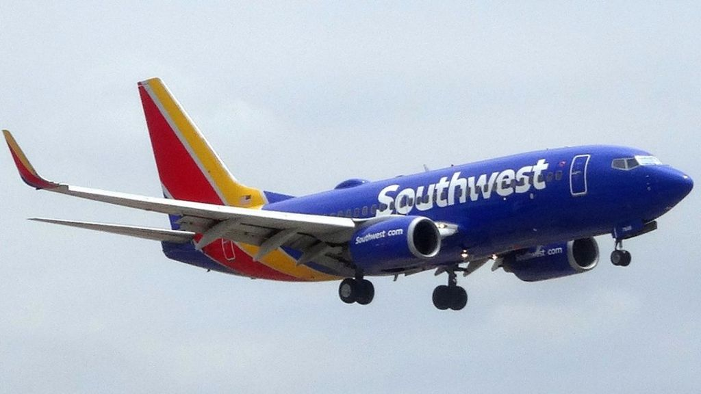 bbc.co.uk - Southwest Airlines flight U-turns after human heart discovery
