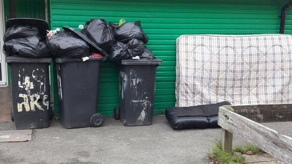 Four-weekly bin collections step closer