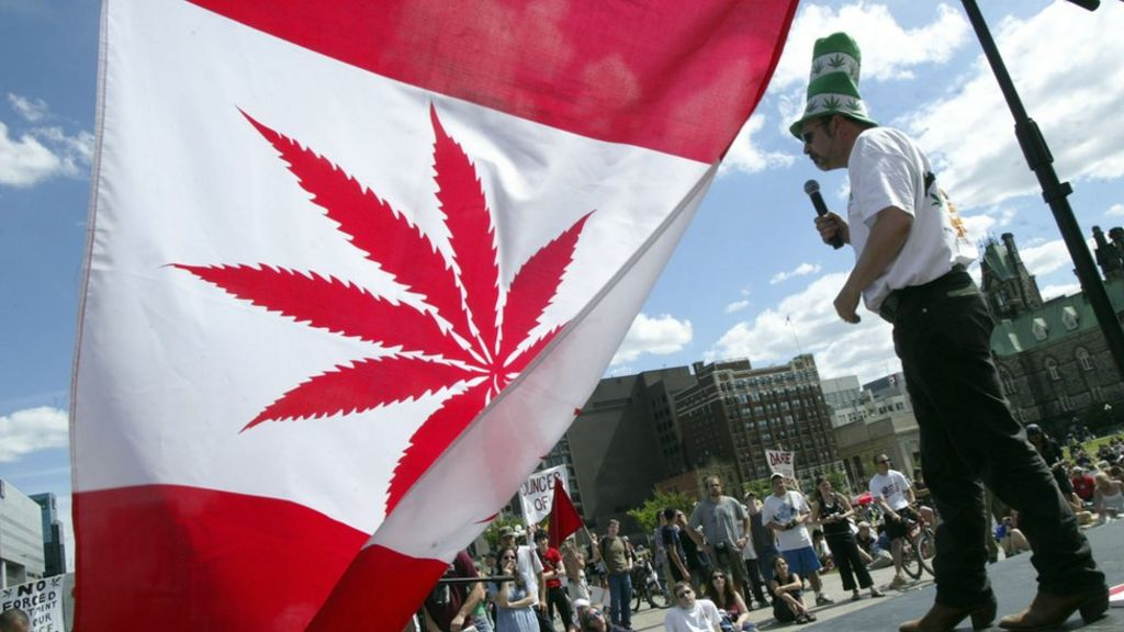 Canada unveils plans to legalise recreational marijuana