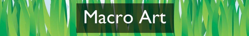 Section heading: Macro Art