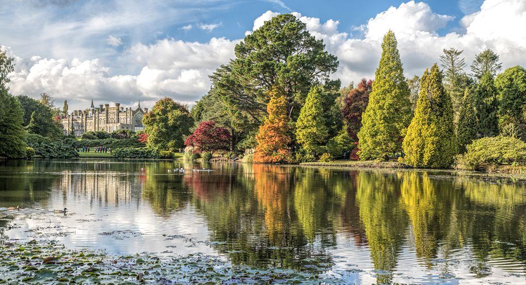 Sheffield Park by Dawn Blight