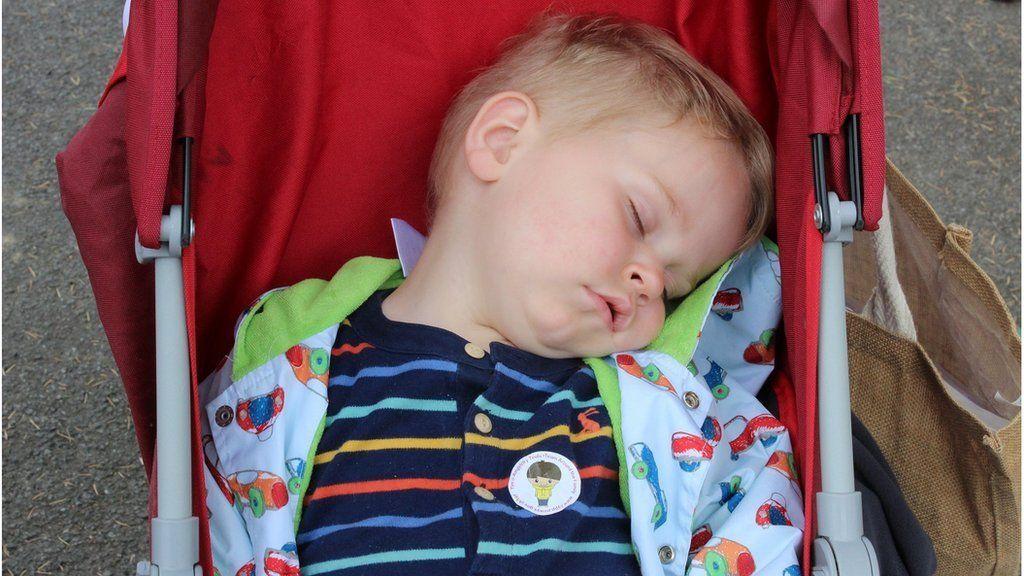 Mae'r cyfan yn ormod i Rhys! // Rhys enjoying an afternoon nap!