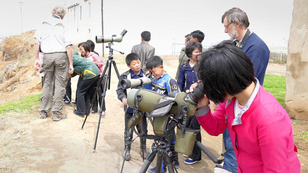 North Korean children looking at shorebirds through telescopes