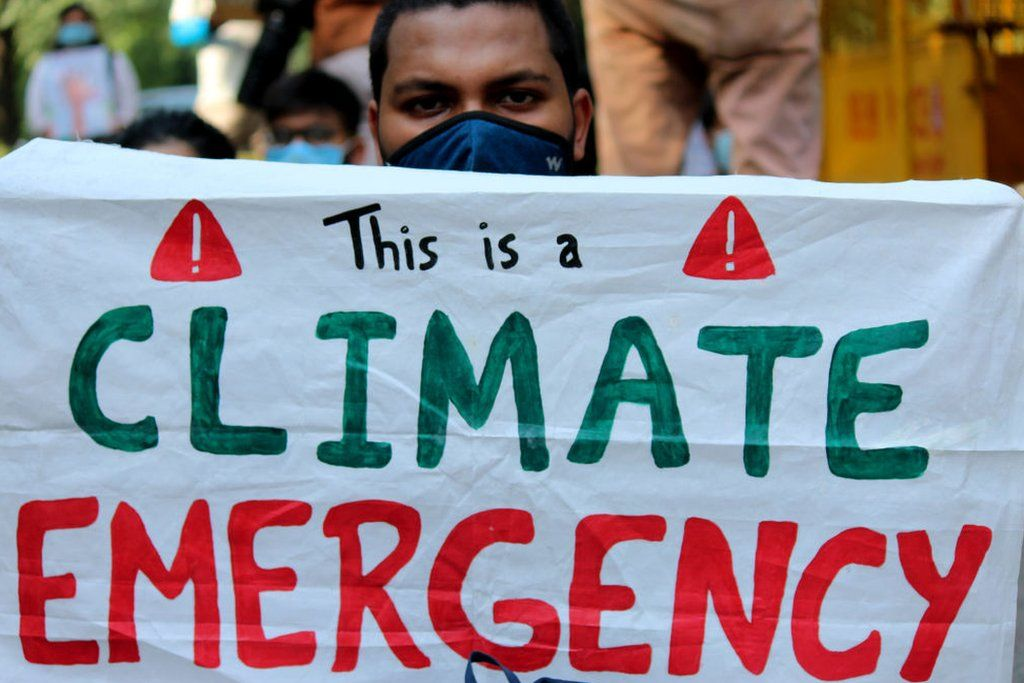Demonstrators hold placards take part in a protest against climate change in India