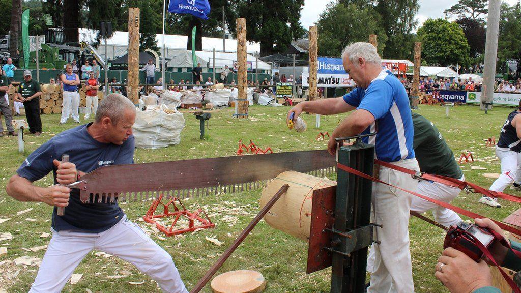 Bwyellwyr Gwynedd yn mynd amdani gyda'r llif // The Gwynedd axemen sawing the seeds of victory?
