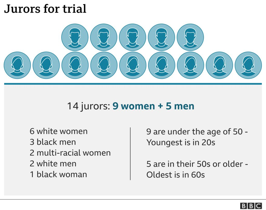 A graphic breaking down the jurors by age, race, and sex