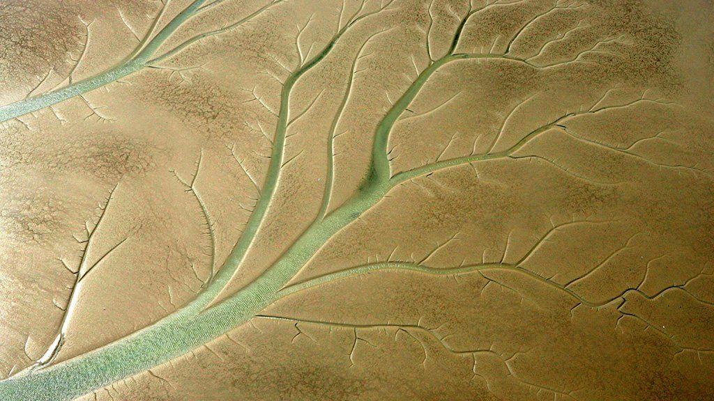 Marsh patterns at Blythburgh in Suffolk