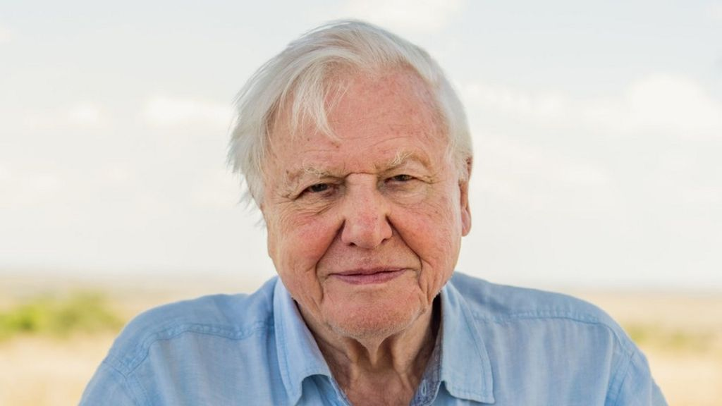 Sir David Attenborough joins Instagram to warn 'the world is in trouble' -  BBC News