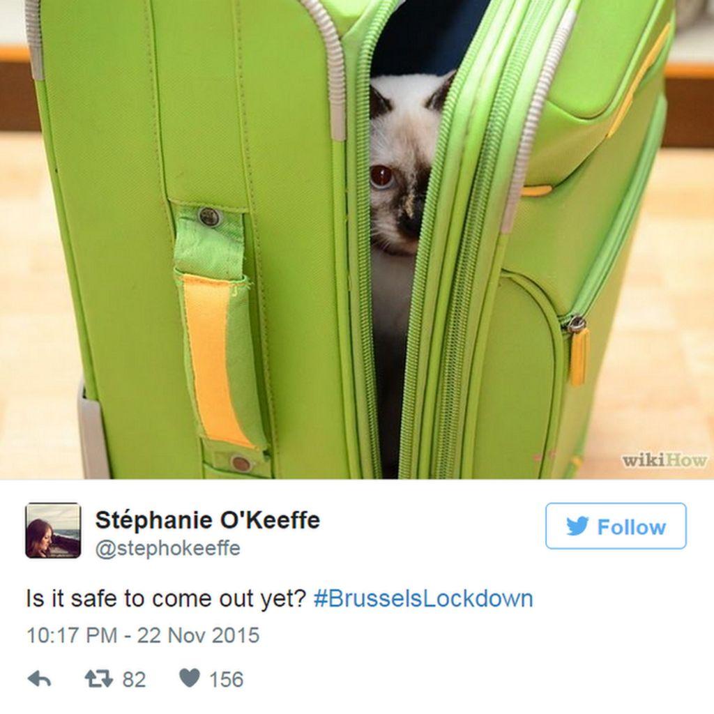 JaneAustenMaMaschio tweets: #relax, Mes amis #BrusselsLockdown