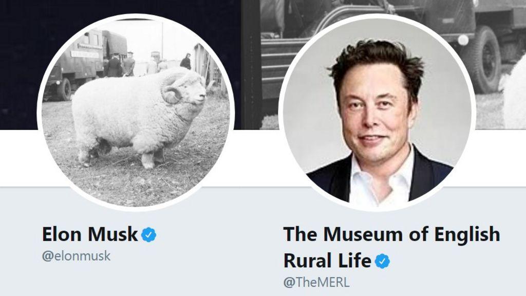 bbc.co.uk - Dhruti Shah - Tesla 'hires' witty museum sheep tweeter