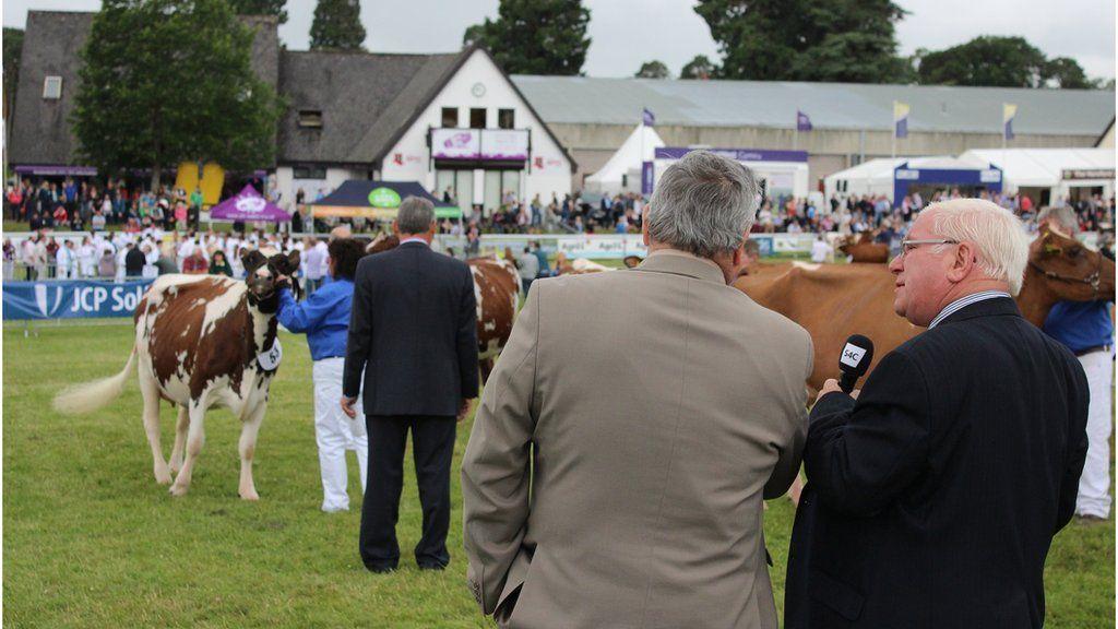 Fydda hi ddim yn Sioe Fawr heb Dai Jones! // S4C presenter Dai Jones in deep discussion about the quality of the cattle