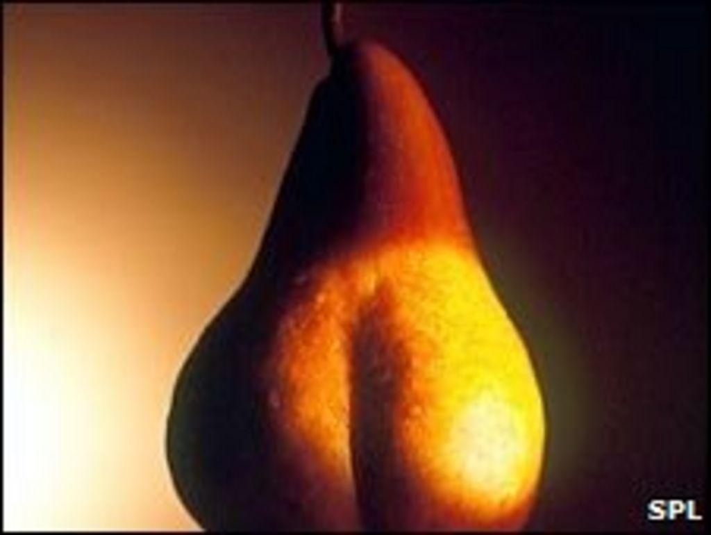 Curvy Women Give Birth Too Smarter Children - FTS - News ...