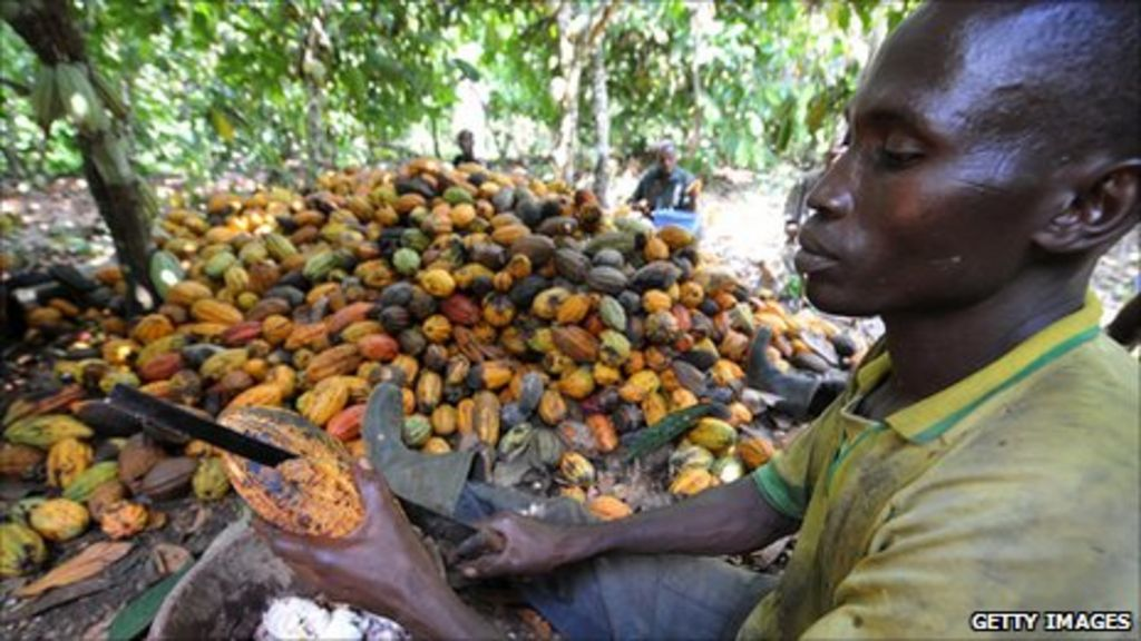 cocoa crisis in ivory coast The ivory coast lost more than 85 percent of its forests since 1990 alone after learning of this problem  six maps that explain the ivory coast cocoa crisis.