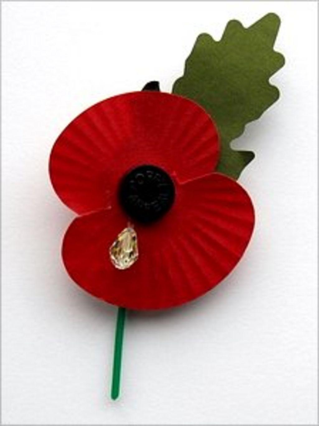 Wiltshire Womans Poppy Teardrop Violates Trademark Bbc News