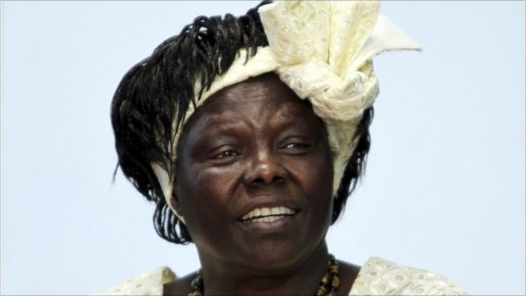 essay on wangari maathai Courtney daily book review aaas 351 due 12/08/11 unbowed: a memoir by wangari maathai unbowed was written to tell the captivating life story of wangari maathai.
