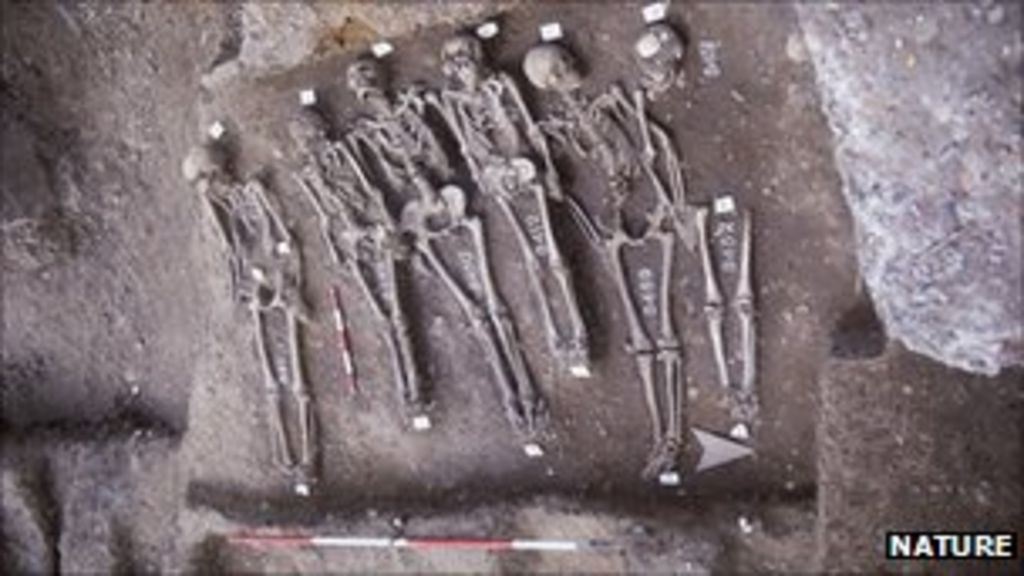 Black Death genetic code 'built' - BBC News