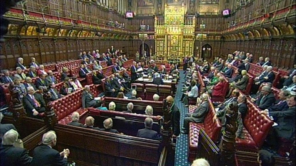 what can the house of lords do