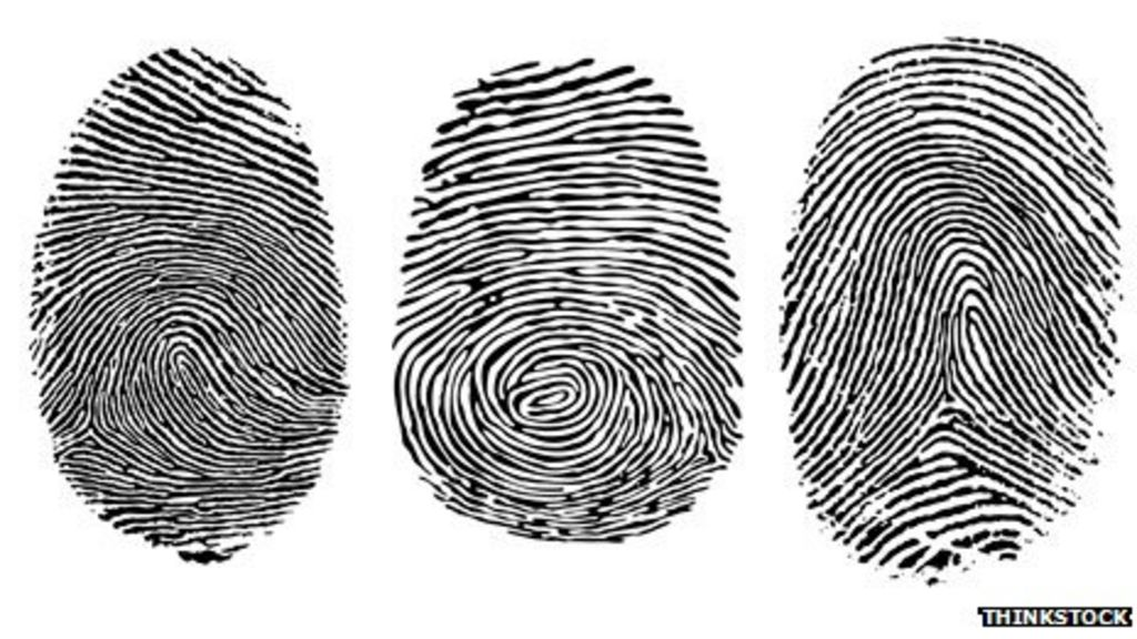Who What Why How Durable Is A Fingerprint BBC News New Fingerprint Patterns