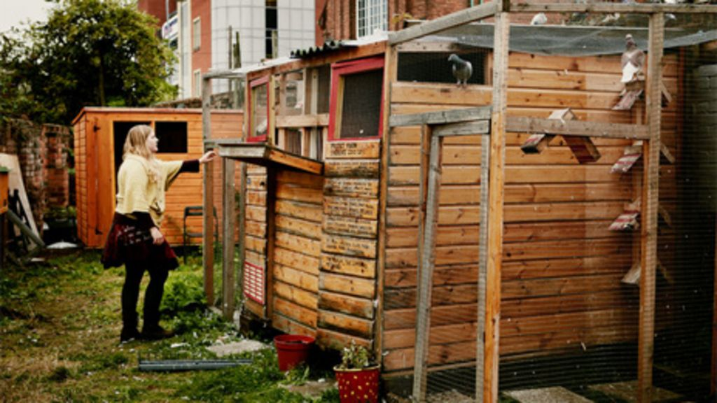 Birmingham Pigeon Fanciers Inspire Play Bbc News