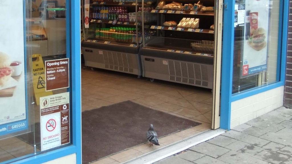 external greggs A pest analysis looks at how external factors can affect a business's activities and performance here's how to create and use one.