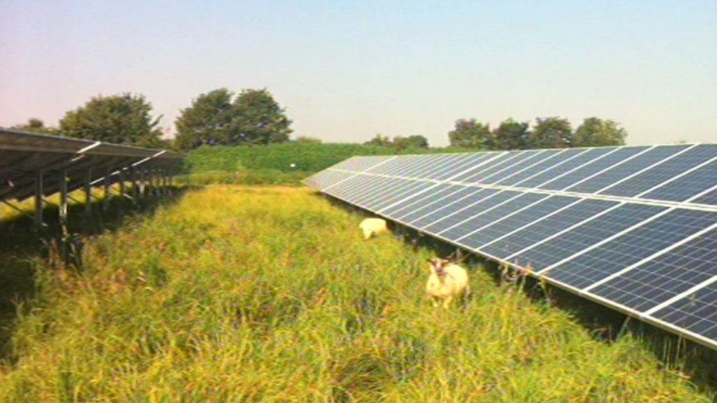 Fareham Solar Farm Plans Are Withdrawn By Developers Bbc