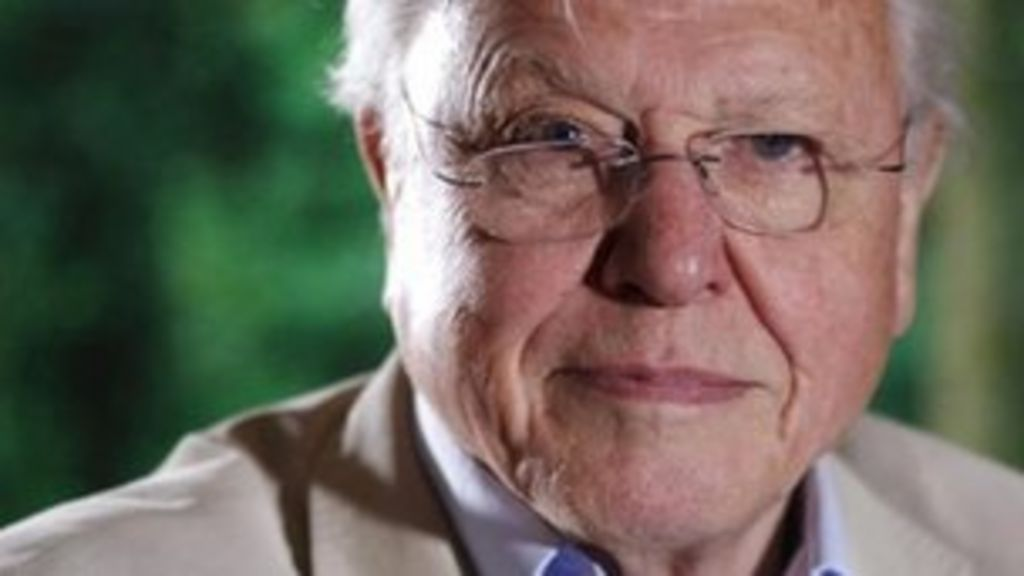 david attenborough voted best of british by magazine bbc