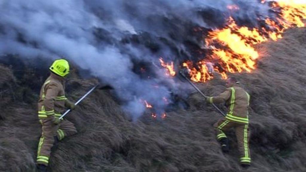 Caminetti British Fires