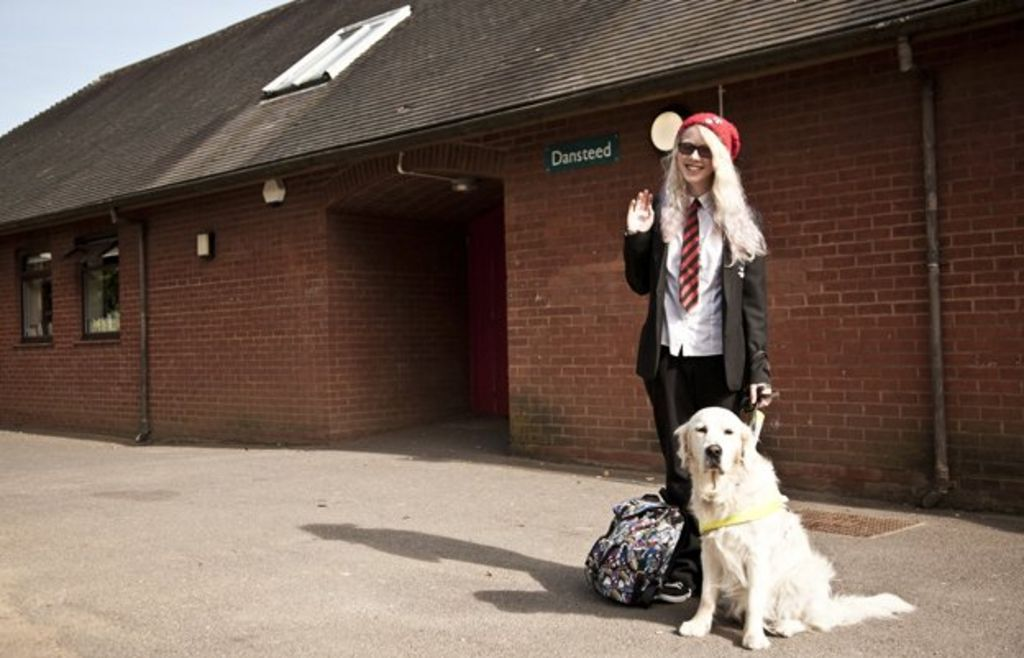 At school with a guide dog