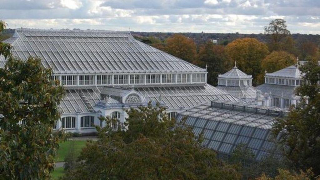 Kew gardens jobs to be axed in 5m shortfall bbc news for Garden design jobs nyc