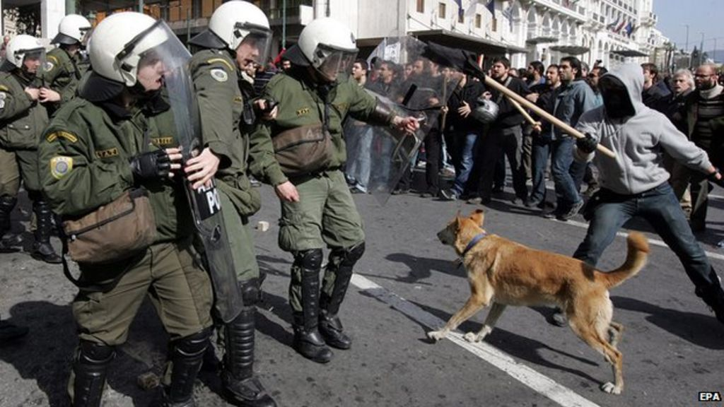 Loukanikos the riot dog fighting against police.