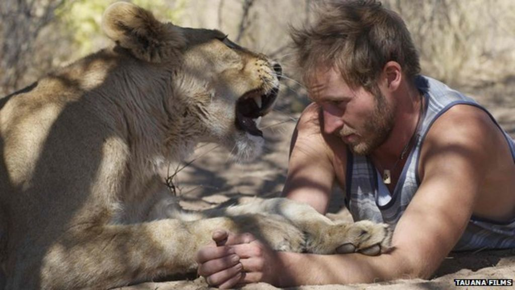 The lion hugger bbc news m4hsunfo