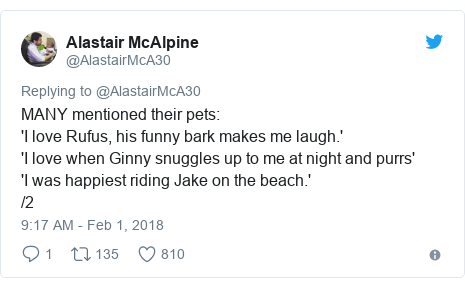Twitter post by @AlastairMcA30: MANY mentioned their pets 'I love Rufus, his funny bark makes me laugh.''I love when Ginny snuggles up to me at night and purrs''I was happiest riding Jake on the beach.' /2