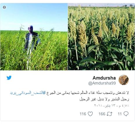 تويتر رسالة بعث بها @Amdursha99: لا تندهش وتتعجب سلة غذاء العالم شعبها يعانى من الجوع #الشعب_السوداني_يريد  رحيل البشير ولا بديل غير الرحيل