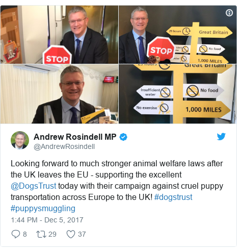 Twitter post by @AndrewRosindell: Looking forward to much stronger animal welfare laws after the UK leaves the EU - supporting the excellent @DogsTrust today with their campaign against cruel puppy transportation across Europe to the UK! #dogstrust #puppysmuggling