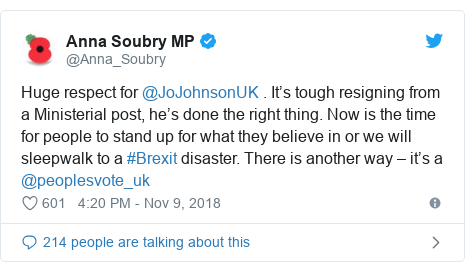 Twitter post by @Anna_Soubry: Huge respect for @JoJohnsonUK . It's tough resigning from a Ministerial post, he's done the right thing. Now is the time for people to stand up for what they believe in or we will sleepwalk to a #Brexit disaster. There is another way – it's a @peoplesvote_uk