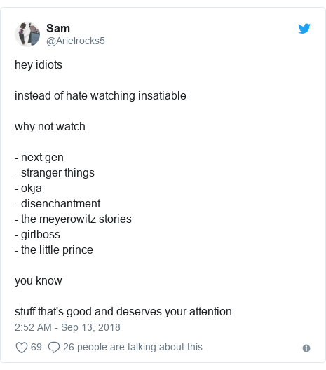 Twitter post by @Arielrocks5: hey idiotsinstead of hate watching insatiable why not watch - next gen- stranger things- okja- disenchantment - the meyerowitz stories- girlboss- the little prince you knowstuff that's good and deserves your attention