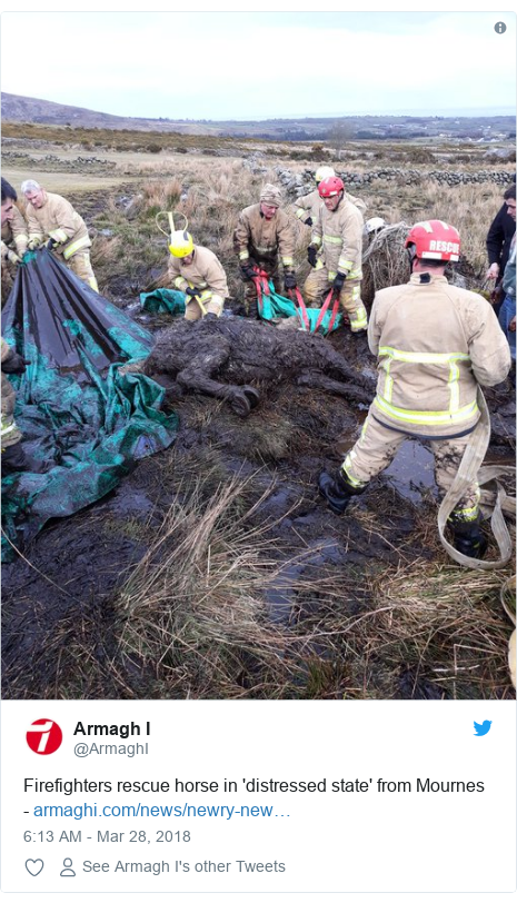 Twitter post by @ArmaghI: Firefighters rescue horse in 'distressed state' from Mournes -