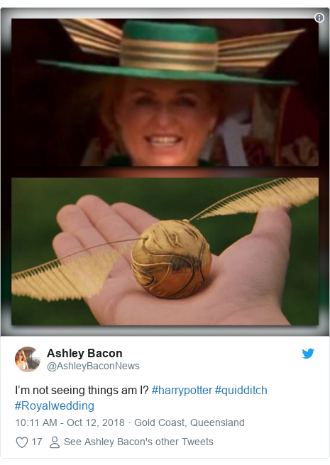 Twitter post by @AshleyBaconNews: I'm not seeing things am I? #harrypotter #quidditch  #Royalwedding