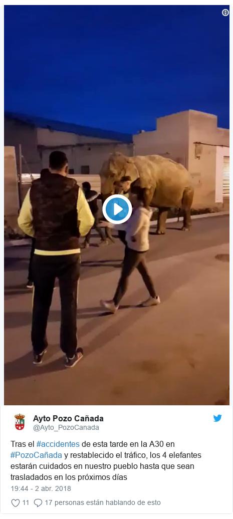 Publicación de Twitter por @Ayto_PozoCanada: Tras el #accidentes de esta tarde en la A30 en #PozoCañada y restablecido el tráfico, los 4 elefantes estarán cuidados en nuestro pueblo hasta que sean trasladados en los próximos días