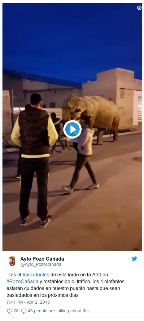 Twitter waxaa daabacay @Ayto_PozoCanada: Tras el #accidentes de esta tarde en la A30 en #PozoCañada y restablecido el tráfico, los 4 elefantes estarán cuidados en nuestro pueblo hasta que sean trasladados en los próximos días