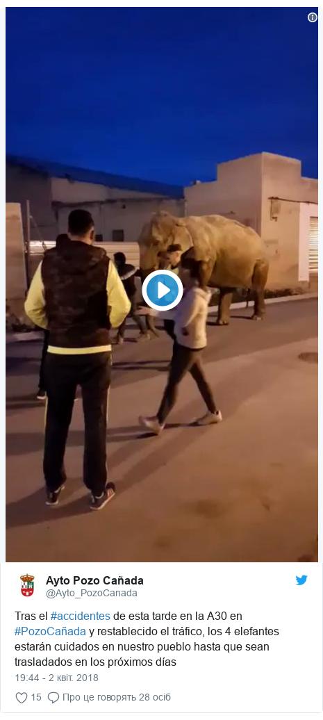 Twitter допис, автор: @Ayto_PozoCanada: Tras el #accidentes de esta tarde en la A30 en #PozoCañada y restablecido el tráfico, los 4 elefantes estarán cuidados en nuestro pueblo hasta que sean trasladados en los próximos días