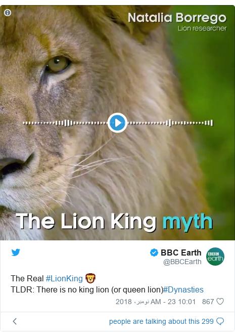 ٹوئٹر پوسٹس @BBCEarth کے حساب سے: The Real #LionKing 🦁TLDR  There is no king lion (or queen lion)#Dynasties
