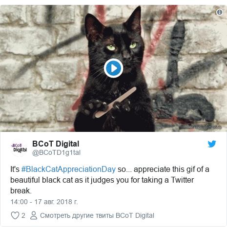 Twitter пост, автор: @BCoTD1g1tal: It's #BlackCatAppreciationDay so... appreciate this gif of a beautiful black cat as it judges you for taking a Twitter break.
