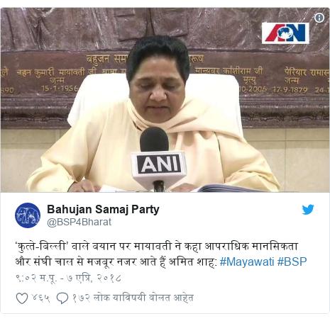 Twitter post by @BSP4Bharat: 'कुत्ते-बिल्ली' वाले बयान पर मायावती ने कहा आपराधिक मानसिकता और संघी चाल से मजबूर नजर आते हैं अमित शाह  #Mayawati #BSP