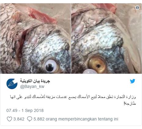 Twitter pesan oleh @Bayan_kw: وزارة التجارة تغلق محلا لبيع الأسماك يضع عدسات مزيفة للأسماك لتبدو على انها طازجة!