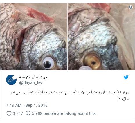 Twitter post by @Bayan_kw: وزارة التجارة تغلق محلا لبيع الأسماك يضع عدسات مزيفة للأسماك لتبدو على انها طازجة!