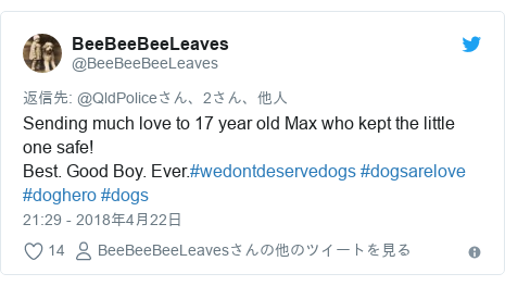 Twitter post by @BeeBeeBeeLeaves: Sending much love to 17 year old Max who kept the little one safe!Best. Good Boy. Ever.#wedontdeservedogs #dogsarelove #doghero #dogs